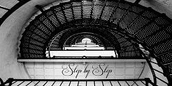 Step by Step Photography