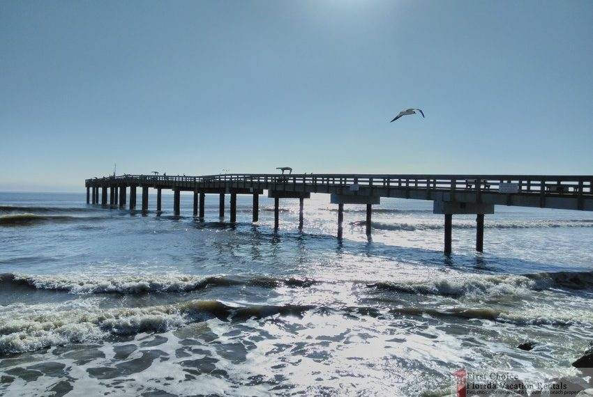 St Augustine Beach Pier Bird Flying Over