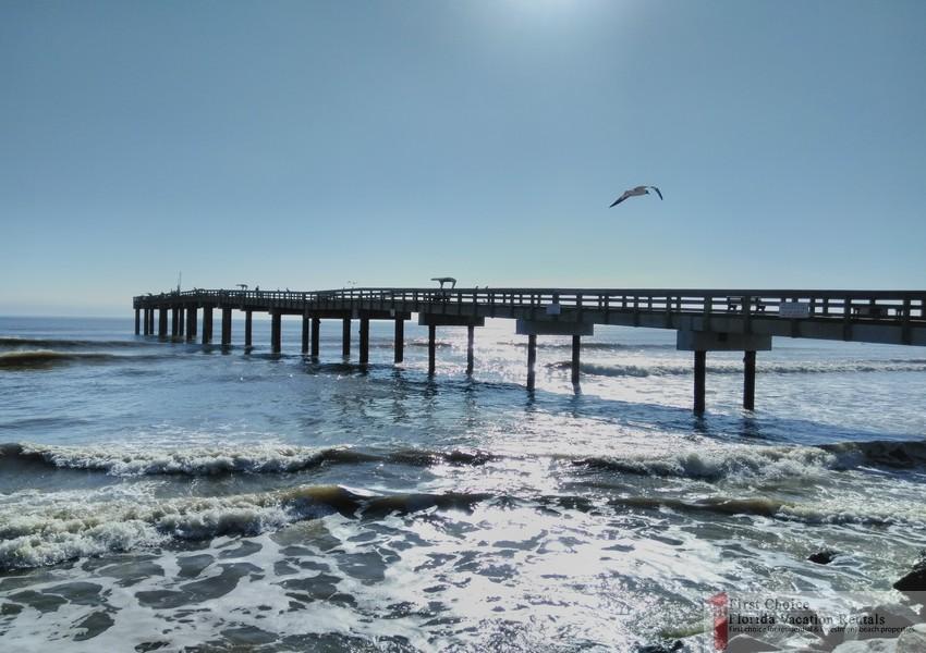 St Augustine Beach Pier Bird Flying Over