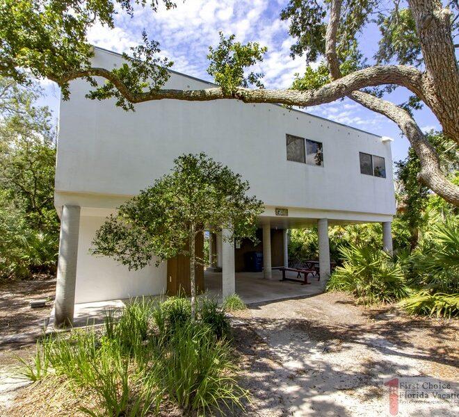 Modern Vibes House