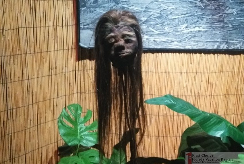 Ripleys Believe it or Not Shrunken Head